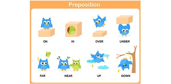 Top Preposition Flashcards