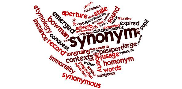 Vocabulary Synonyms and Antonyms Level E Unit 2 Flashcards