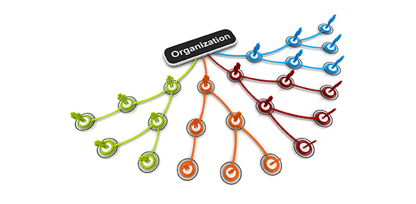 Seven Functions Of Organizational Culture