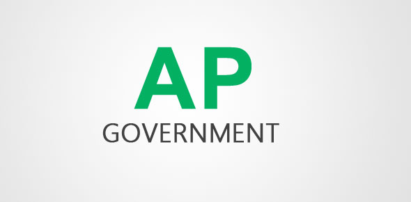 AP Government Chapter 13 Terms
