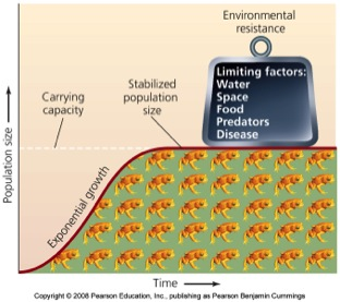 relationship between limiting factors and carrying capacity example