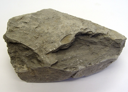 Rock Quiz Geology 101 Lab Wwu Flashcards By Proprofs