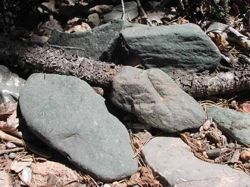 Diorite Gneiss