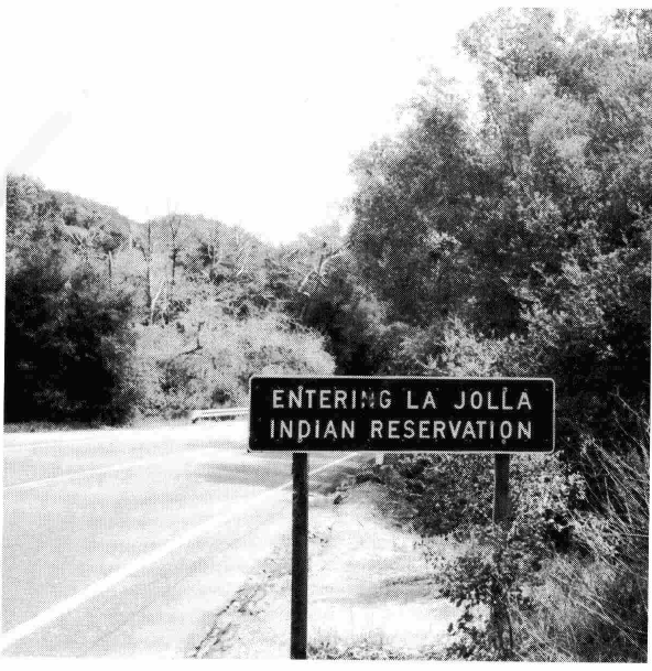 Judy Chicago, Linda Nochlin And The Birth of Feminist Art