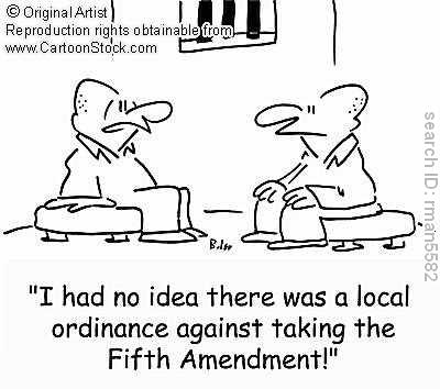 What is a landmark Supreme Court case dealing with the Amendments?